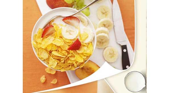 早餐谷物样品2