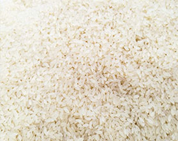 Nutrition rice 2
