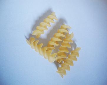 Spiral shell 01